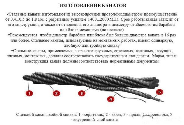 Канат стреловой
